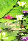 DVD-Green-Music-Beautiful-Inspiration