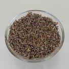 Lavendel-kruiden-50-gr