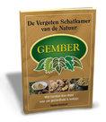 boek over gember