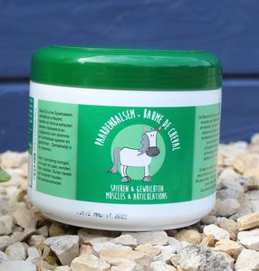 eve line paardenbalsem 500 ml